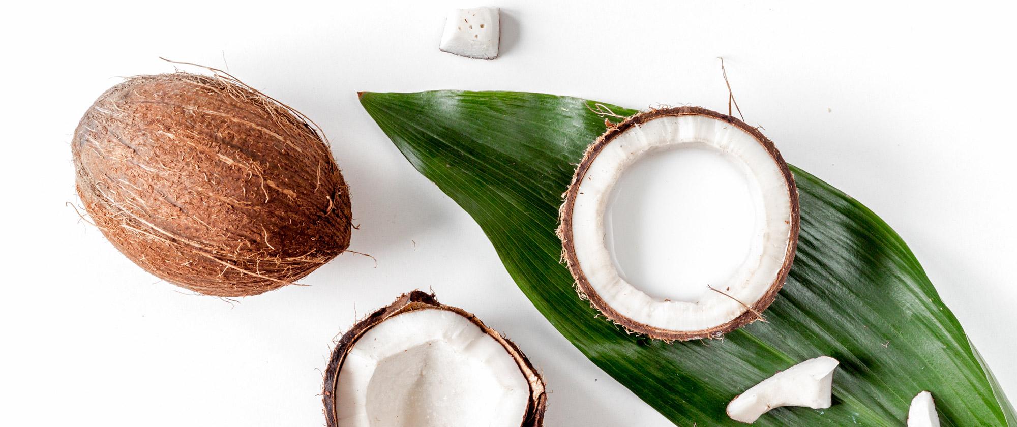 image coconut